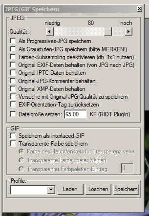 Progressiver Schnappschuss-Haken